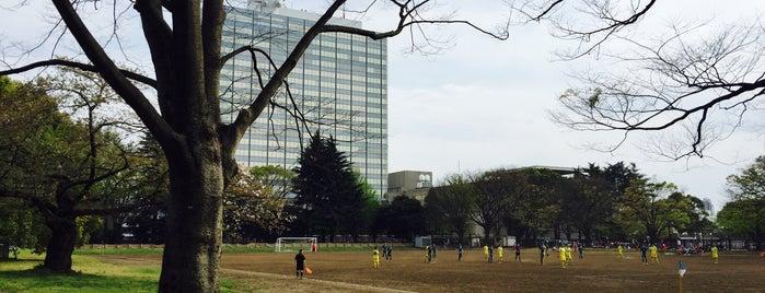 代々木公園サッカー場 is one of football.
