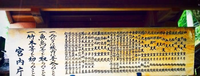 明正天皇 月輪陵 is one of 天皇陵.