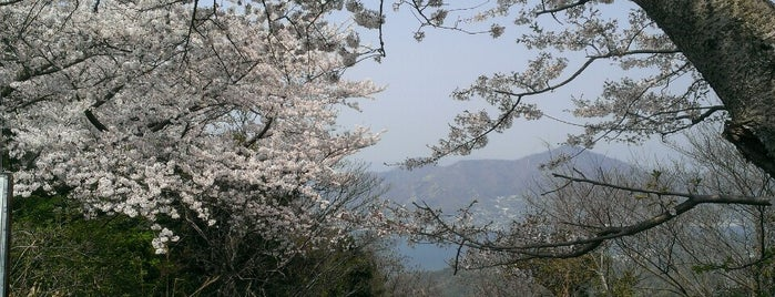 善積山 is one of 四国の山.