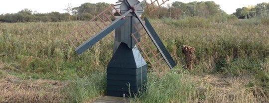Recreatiegebied Veerplas is one of Haarlem, The Netherlands.