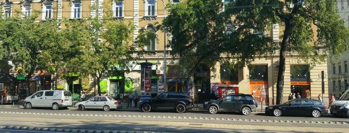 Bio Hair is one of Budapesti egészséges helyek.