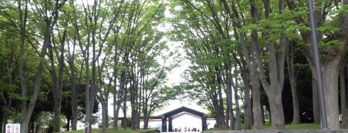 Kukishobu Park is one of サイクリング.