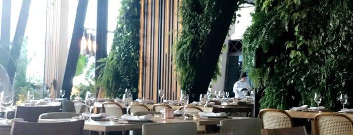 Capim Santo is one of Restaurantes.