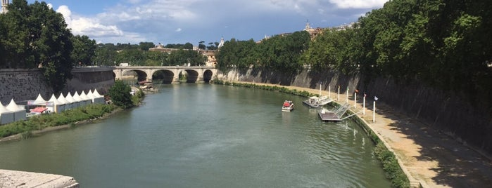 Lungotevere Dei Fiorentini is one of Rome.