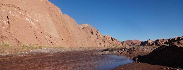 Catarpe is one of Atacama.