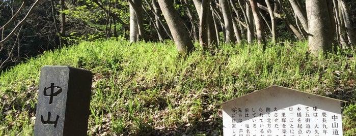 瓜生坂一里塚 is one of 201405_中山道.