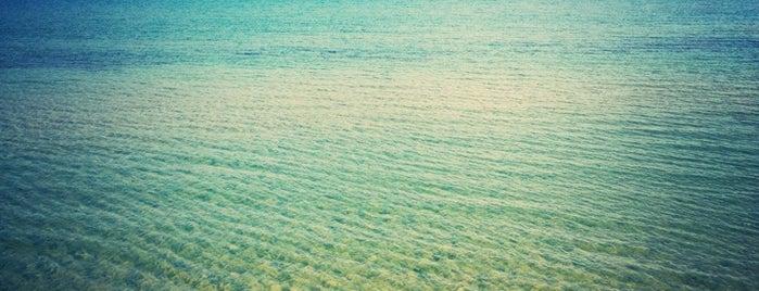Sahte Cennet Beach Club is one of İzmir.