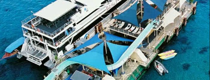 Bali Hai Cruises is one of Nanda's All Favorite♥♚.