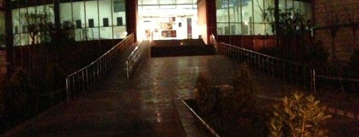 Diyarbakır Devlet Tiyatrosu Orhan Asena Sahnesi is one of ALIŞVERİŞ MERKEZLERİ / Shopping Center.