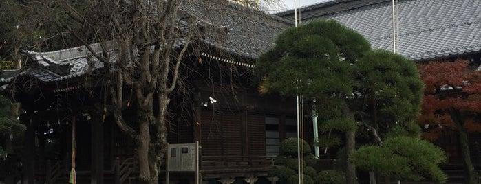 成顕寺 is one of 地元で行く場所(流山市).