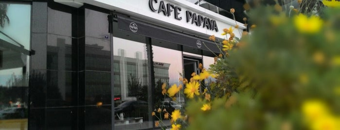 Cafe Papaya is one of İzmir.