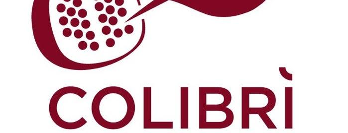 Colibrì Consorzio Ospedaliero is one of Consorzio Ospedaliero Colibrì.