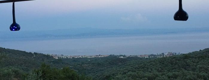 Şahin Tepesi is one of doğallık..
