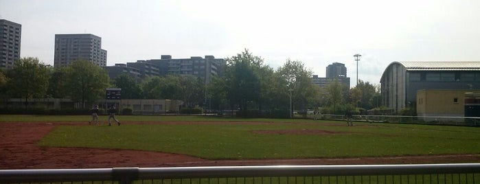 Berlin Sluggers Stadion is one of Baseball - 1. Bundesliga Nord und Süd.