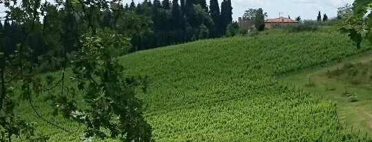 Castelli Del Grevepesa is one of Chianti Classico Producers.
