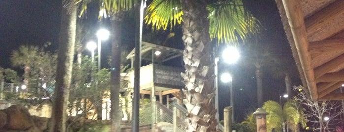 Pelican Cafe U S  Lake Park Fl