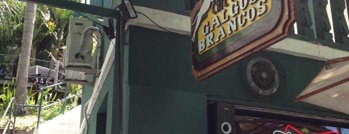 Galgos Brancos is one of Cafés.
