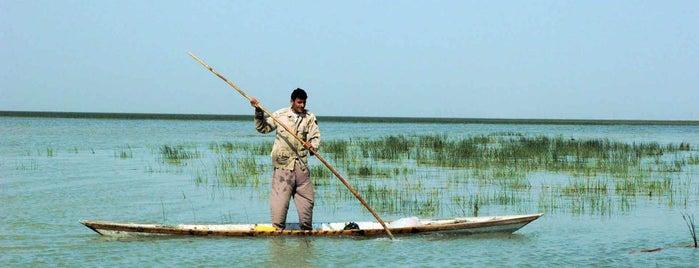 Shadegan International Pond is one of Iran Natural Venues | جاذبههای طبیعی ایران.