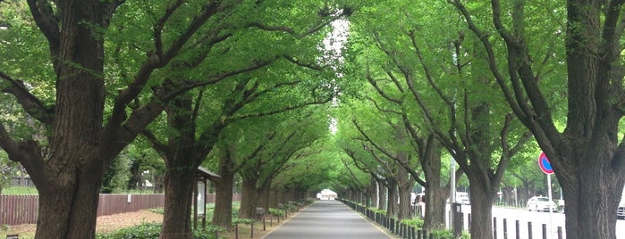 Meiji Jingu Gaien is one of 歴史(明治~).