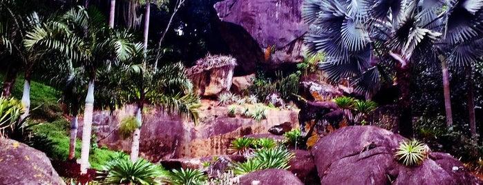 Sítio Roberto Burle Marx is one of Travel Guide to Rio de Janeiro.