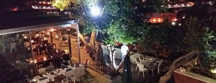 Restaurante Árvore is one of Restaurantes (Grande Porto).