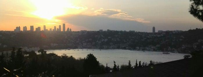 Cemile Sultan Korusu is one of İstanbul'daki Park, Bahçe ve Korular.