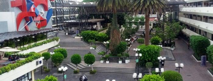 Universidad La Salle is one of Ciudad de México :: Universidades.