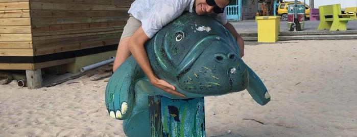 Estelle's On The Beach is one of Honeymoon spots.