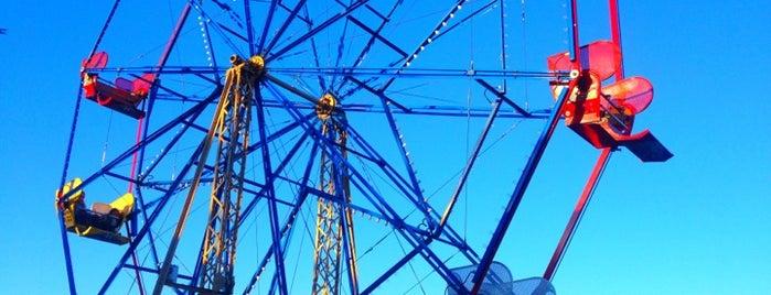 Balboa Fun Zone is one of Nikki Kreuzer's Offbeat L.A..