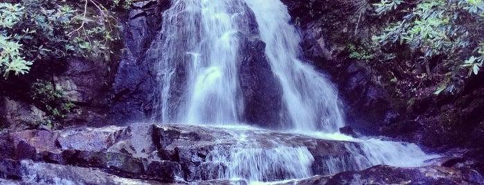 Laurel Falls is one of Random.
