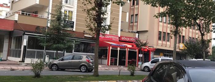 Gökçe Cafeterya is one of Baranoğlu cafe pastane restorant.
