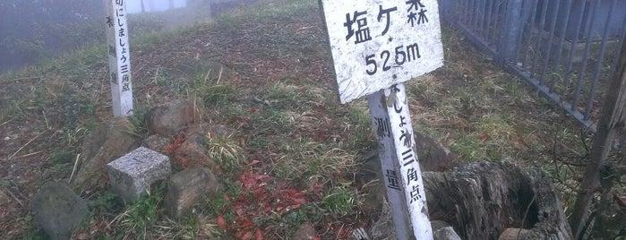 塩ヶ森 山頂 is one of 四国の山.