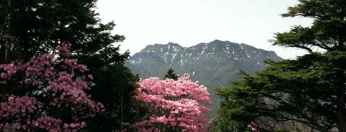黒川山 山頂 is one of 四国の山.