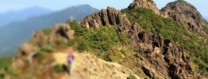 八巻山 is one of 四国の山.