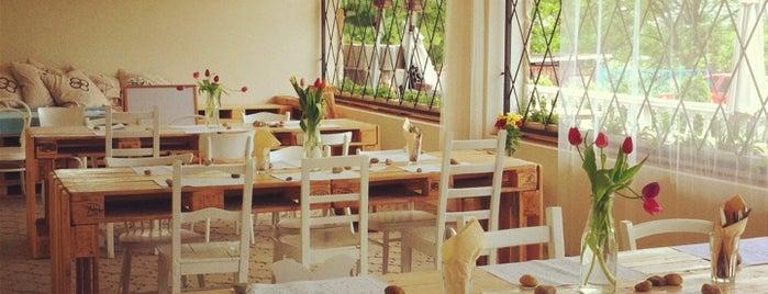 Grazing Daysi is one of Vegetarian restaurants in Prague.