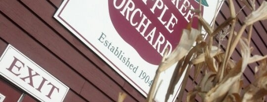 Pine Tree Apple Orchard is one of White Bear Lake Area Hot Spots.