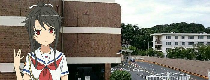 U.S. Fleet Activities Yokosuka is one of lieu a Tokyo 3.