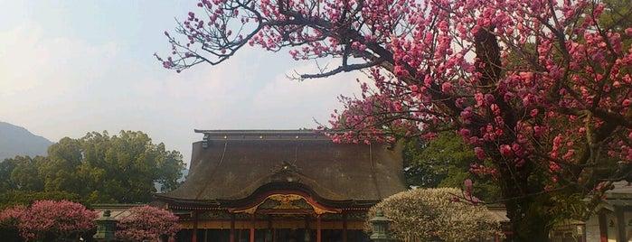 Dazaifu Tenmangu Shrine is one of 神社.