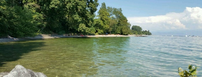 Plage de Buchillon is one of Beach.