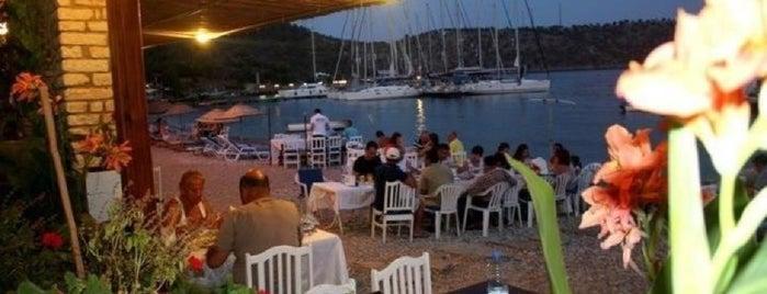 Orhan's Restaurant is one of Cennet ve İlçeleri.