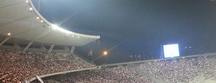 Atatürk Olimpiyat Stadyumu is one of Gokay.