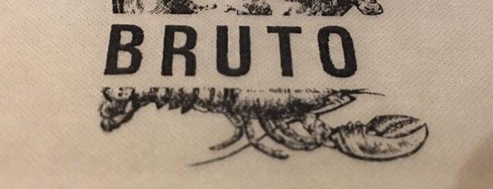 Bruto is one of GUADALAJARA.