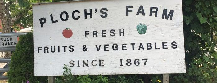 Ploch's Farm is one of NJ To Do.