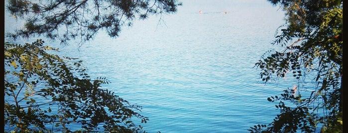 Голубые Озера / Blue Lakes is one of загород.