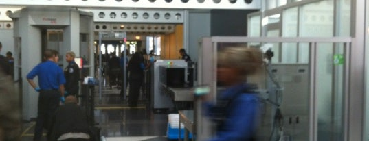 Terminal 1 Security Checkpoint is one of Airports and hotels I have known.