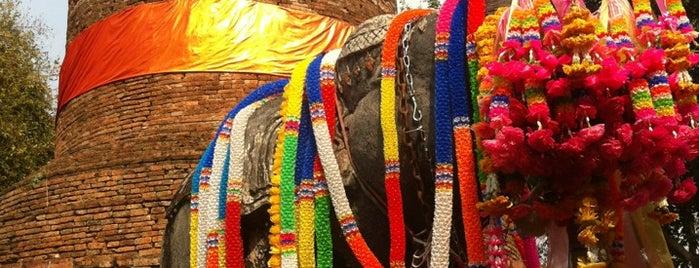กู่ช้าง - กู่ม้า (Ku Chang - Ku Ma) is one of ลำพูน, ลำปาง, แพร่, น่าน, อุตรดิตถ์.