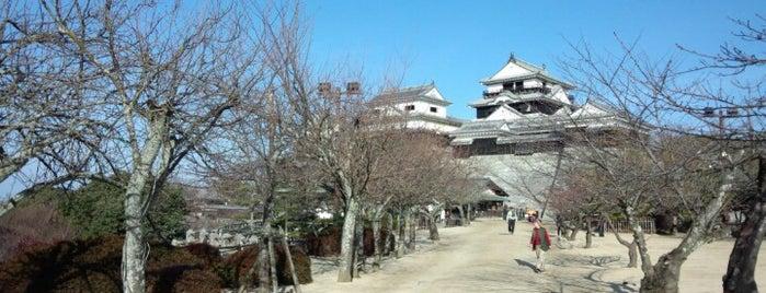 城山公園 is one of 日本の都市公園100選.