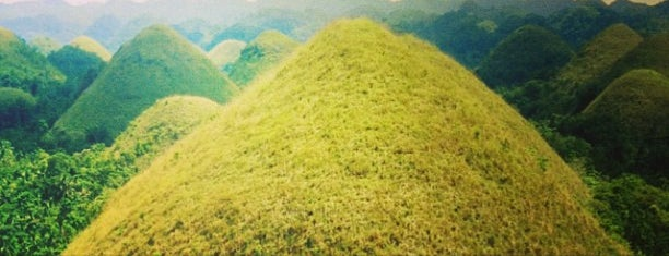 The Chocolate Hills is one of Gulliver Twist.