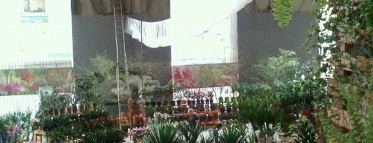Mercado das Flores is one of Compras.