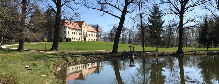 Dvorac Lužnica, Marijini Dvori is one of Castles in Croatia.